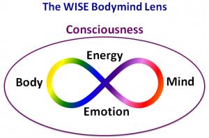 WISE Lens Diskin Life